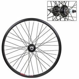 WheelMaster Rear Bicycle Wheel 20 x 1.75 36H, Alloy, Bolt On